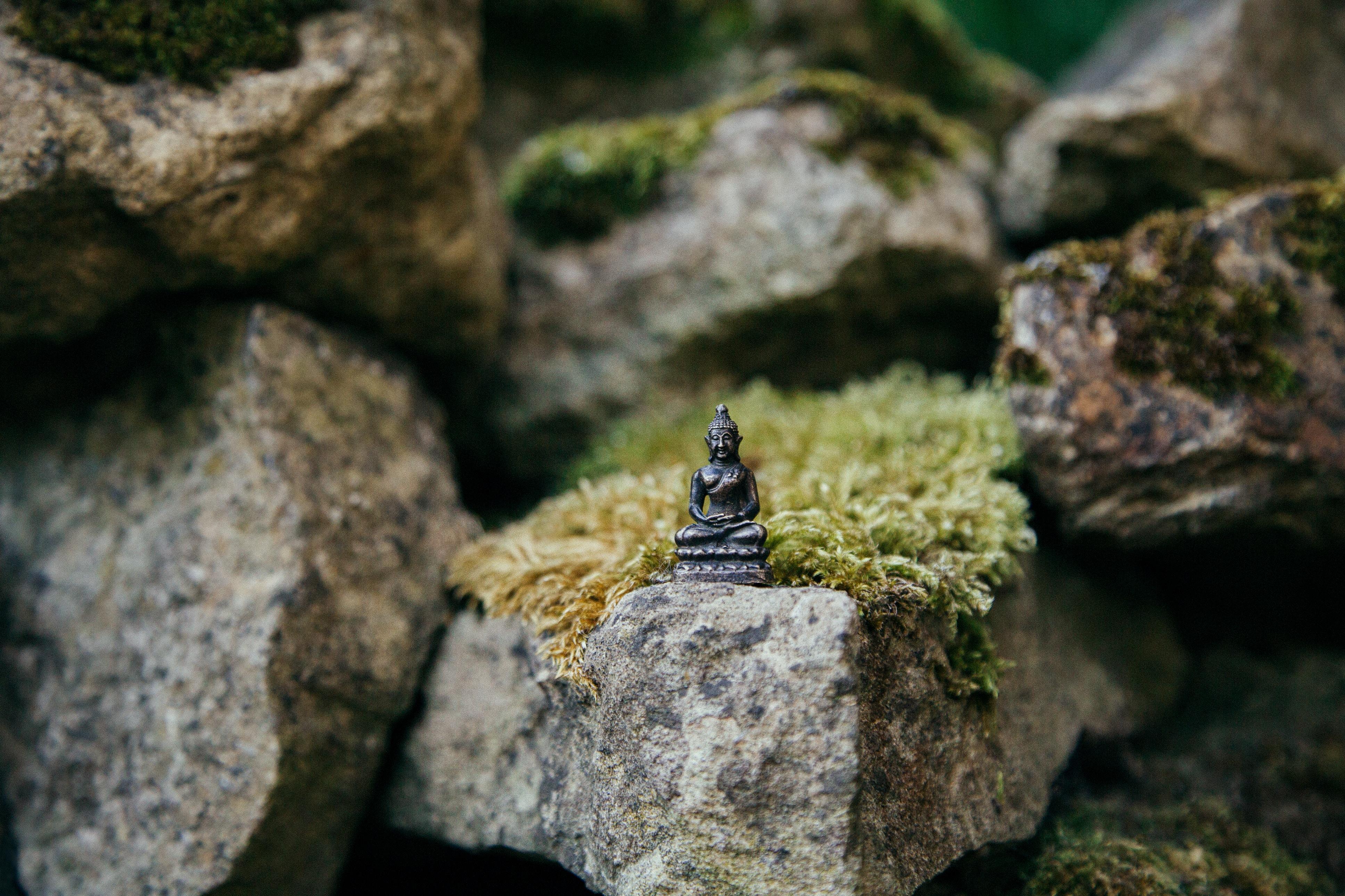 Relax More - Wat Boeddha bedoelde met Mindfulness