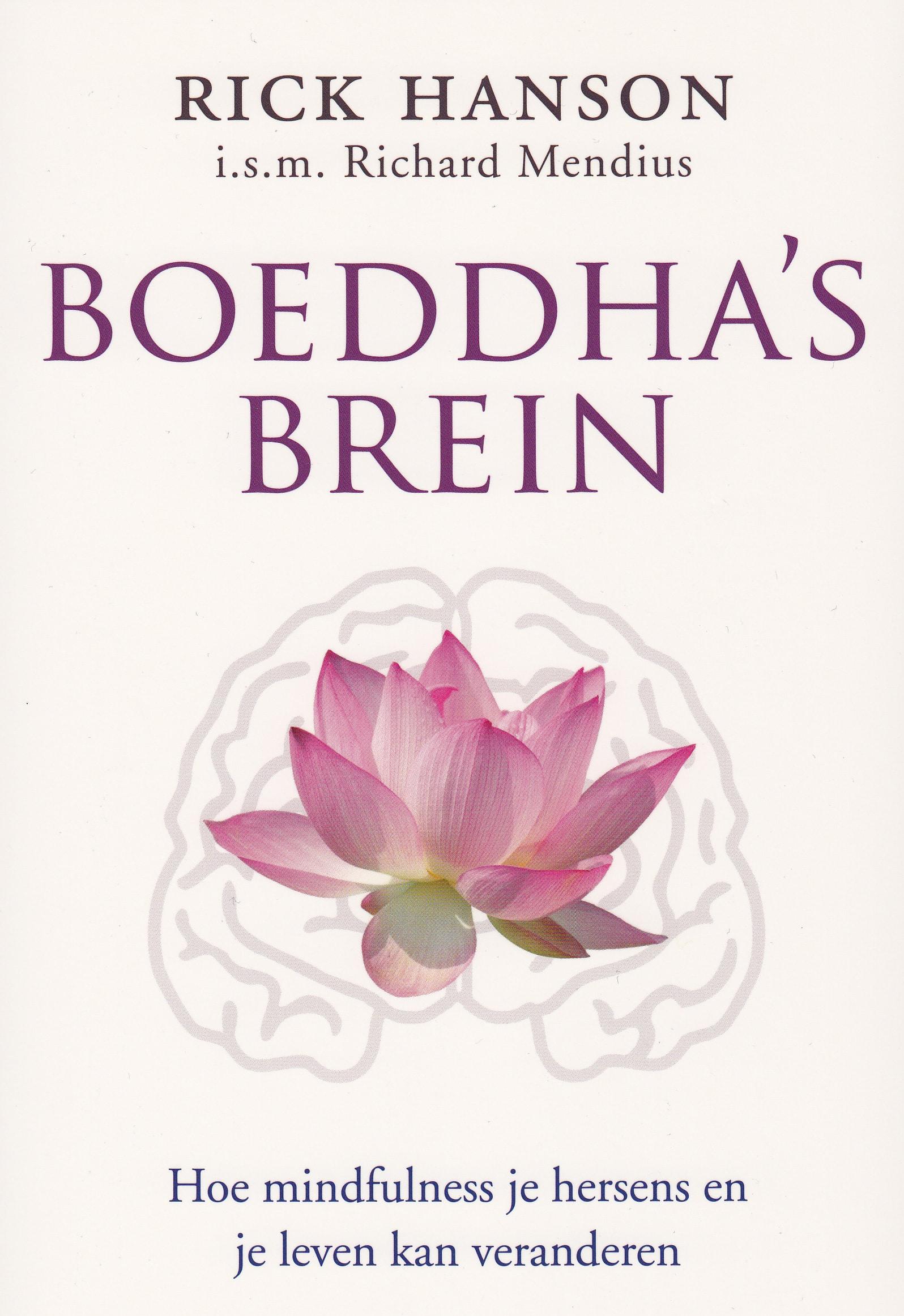Relax More - Boeddha's brein