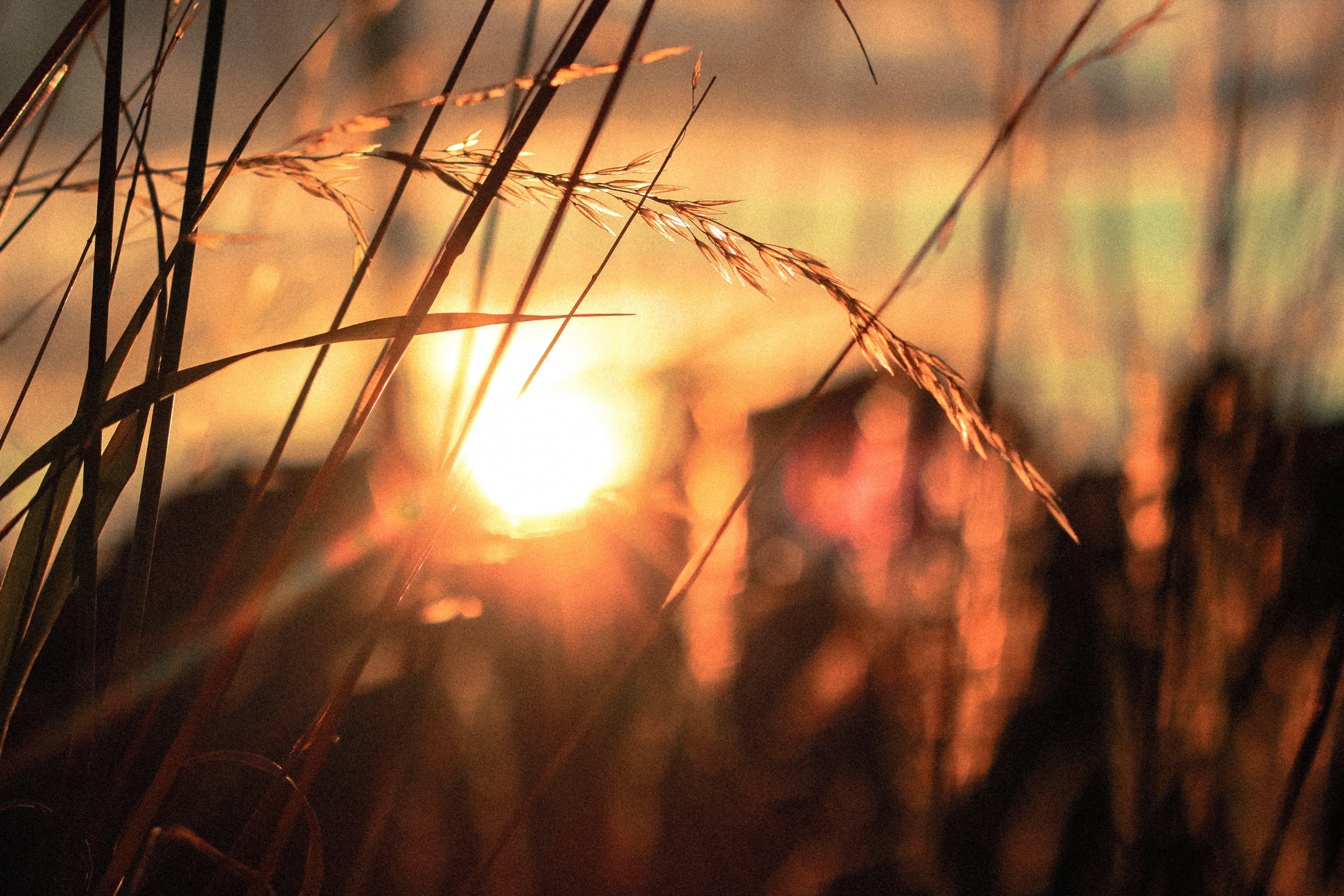Relax More - Een vonk van licht