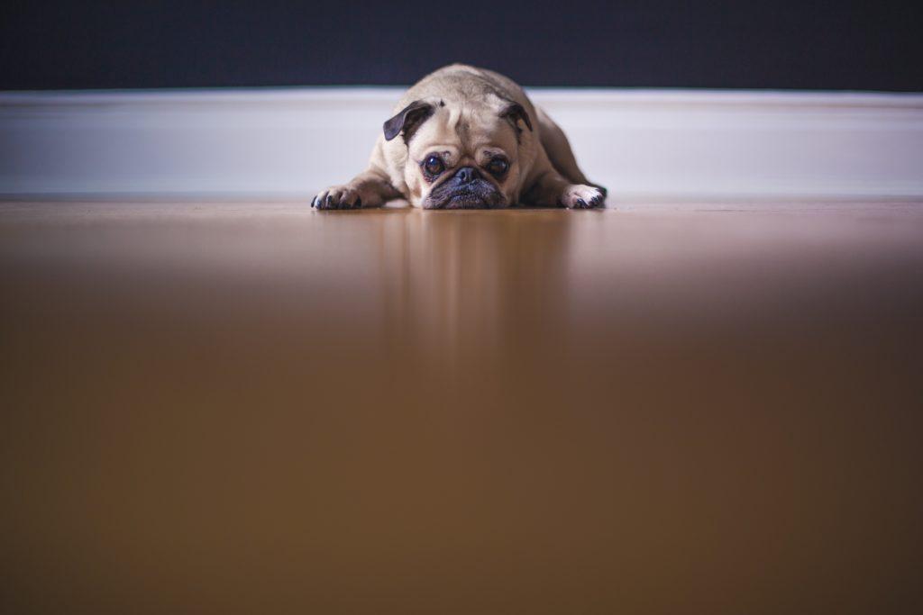 Relax More - Depressie en lichamelijke aandoeningen