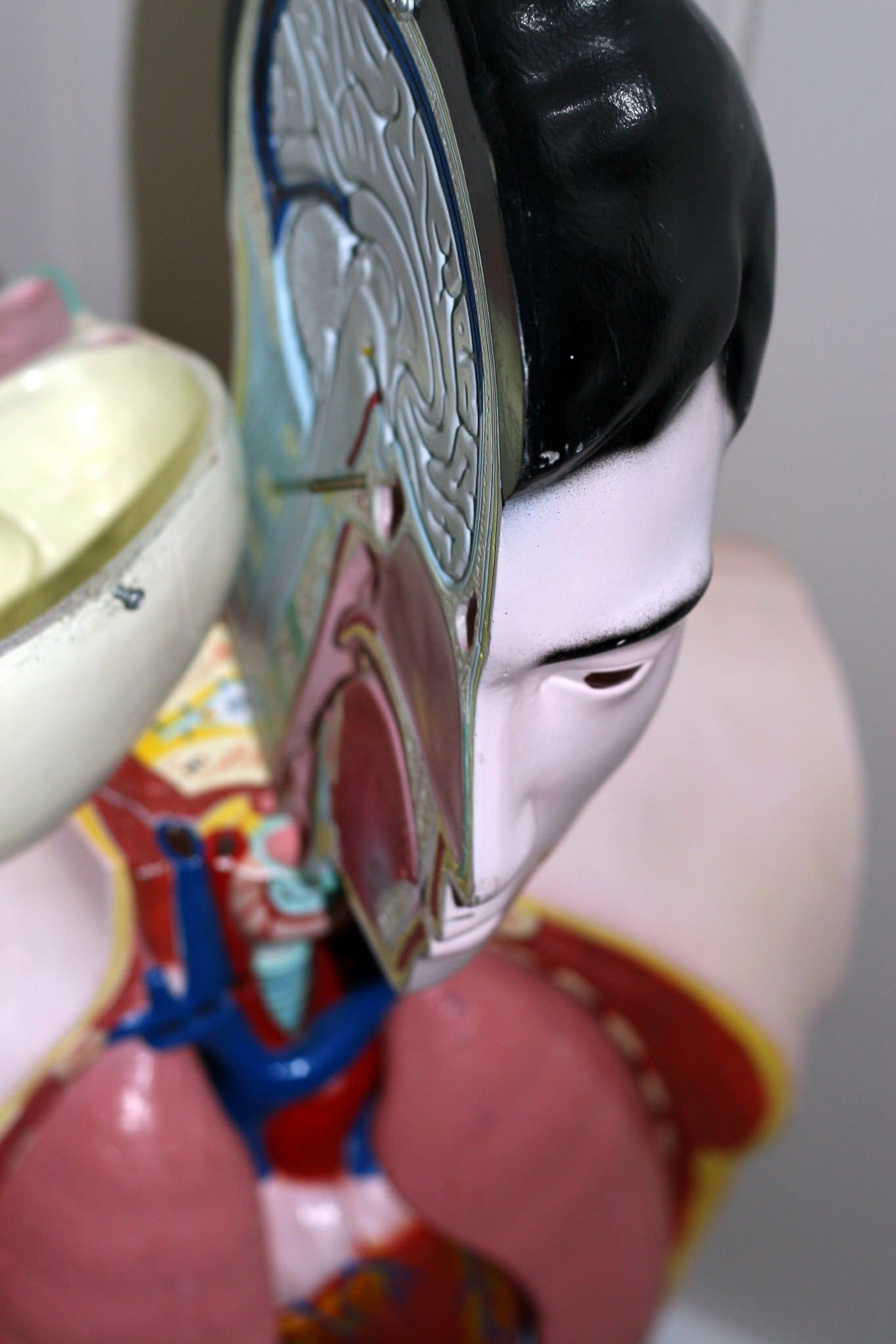 Relax More - De drie breinen in Tai Chi