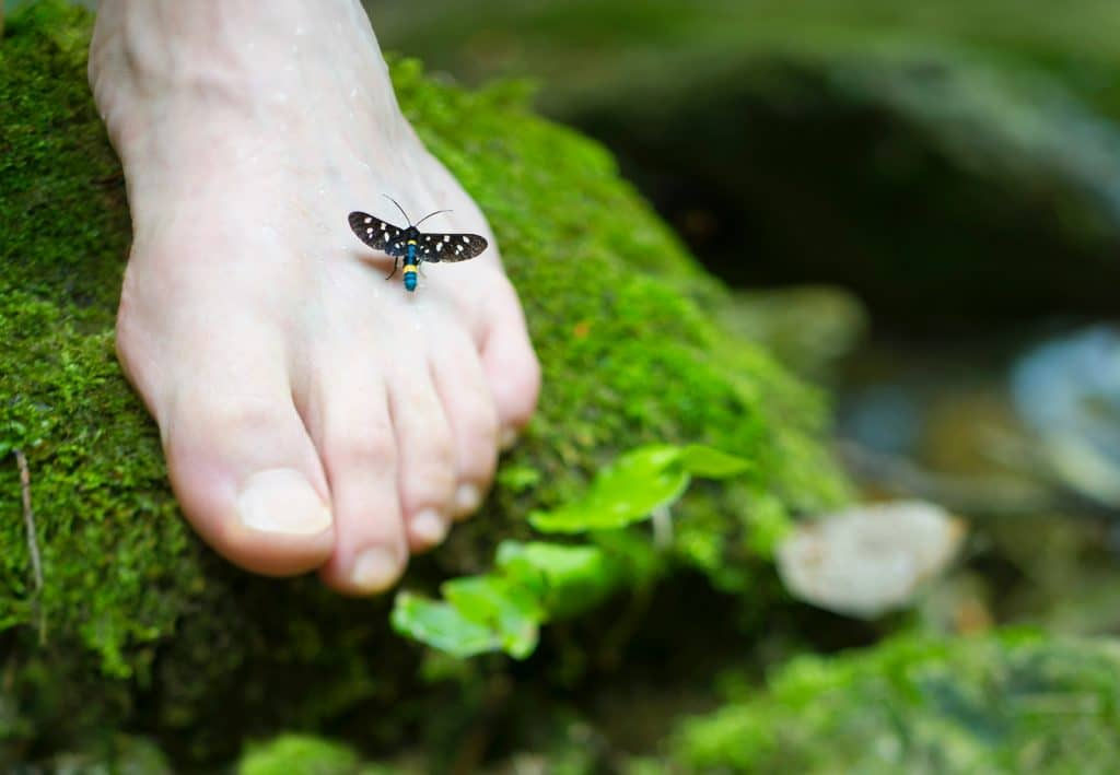 Relax More - Tai Chi verbetert de gevoeligheid in de voet