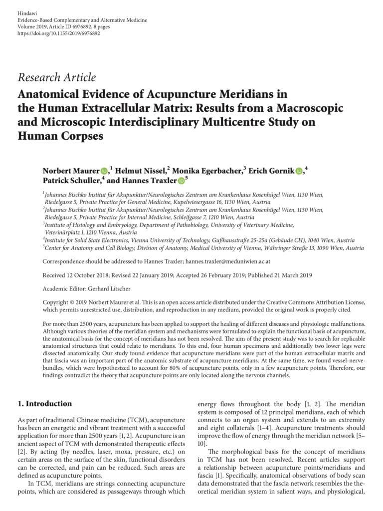 Relax More - Wetenschappelijk anatomisch bewijs voor het bestaan van meridianen 3