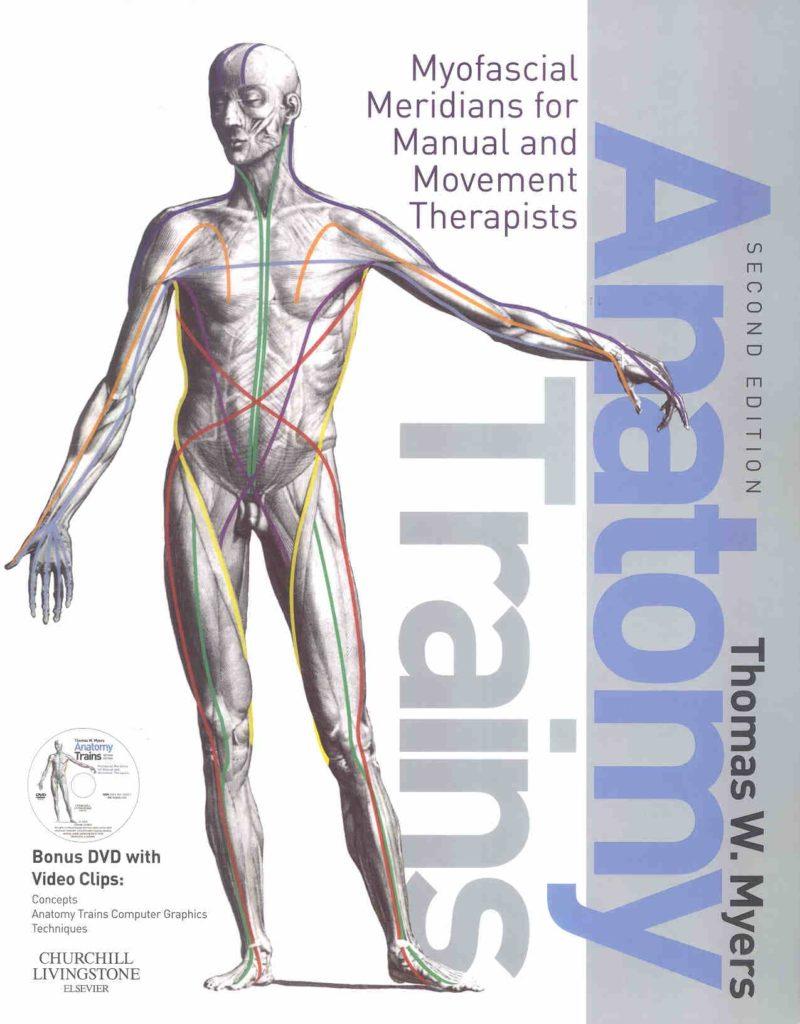 Relax More - Wetenschappelijk anatomisch bewijs voor het bestaan van meridianen